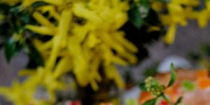 Drożdżowe babki do Wielkanocnego koszyczka