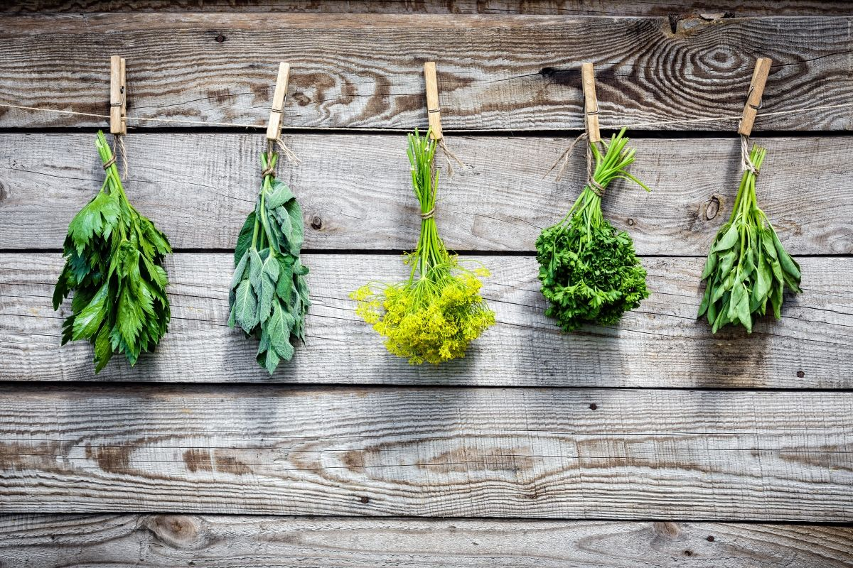 Herbs In The Kitchen - How To Use Aromatic Herbs