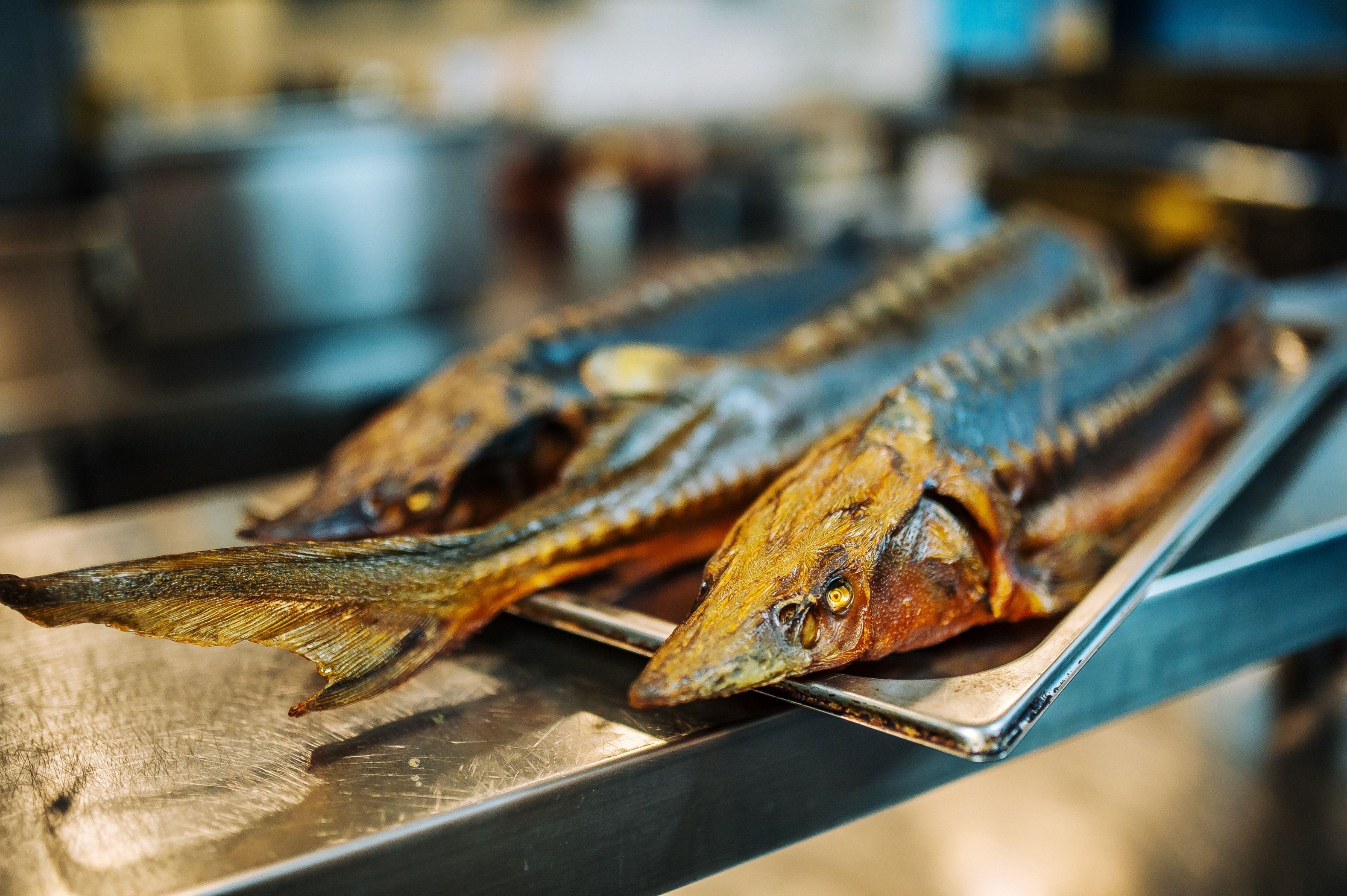 Jesiotr Kulinarne Wyzwanie Rozkosz Dla Podniebienia Gotujmy Pl