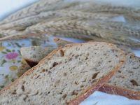 Chleb słonecznikowy z melasą na zakwasie