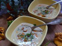 Domowa zupa z kurkami