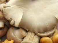 Jak najlepiej mrozić grzyby?