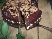 Szybkie ciasto kakaowe