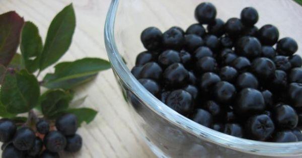 Nalewka z aronii z imbirem - Dojrzałe owoce aronii dokładnie umyte i odsączone z wody przekładam do słoja.
