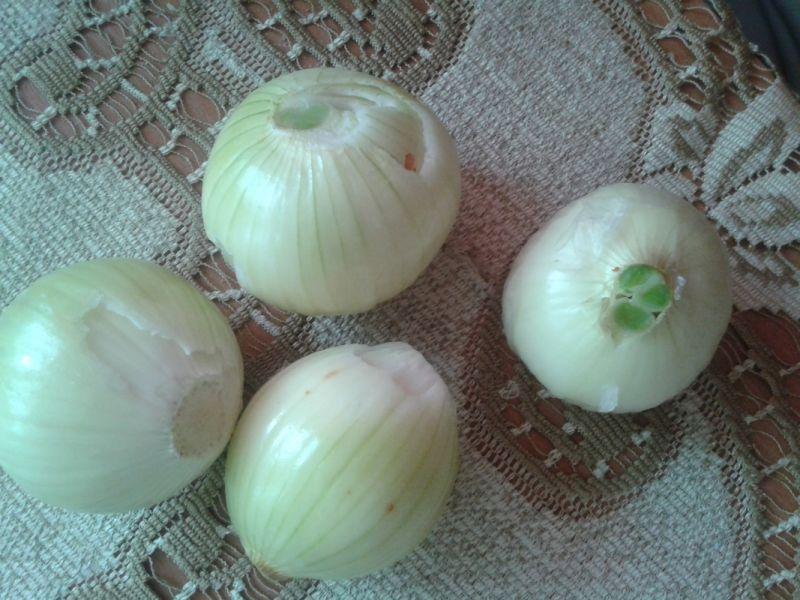 Biała kiełbasa i cebula