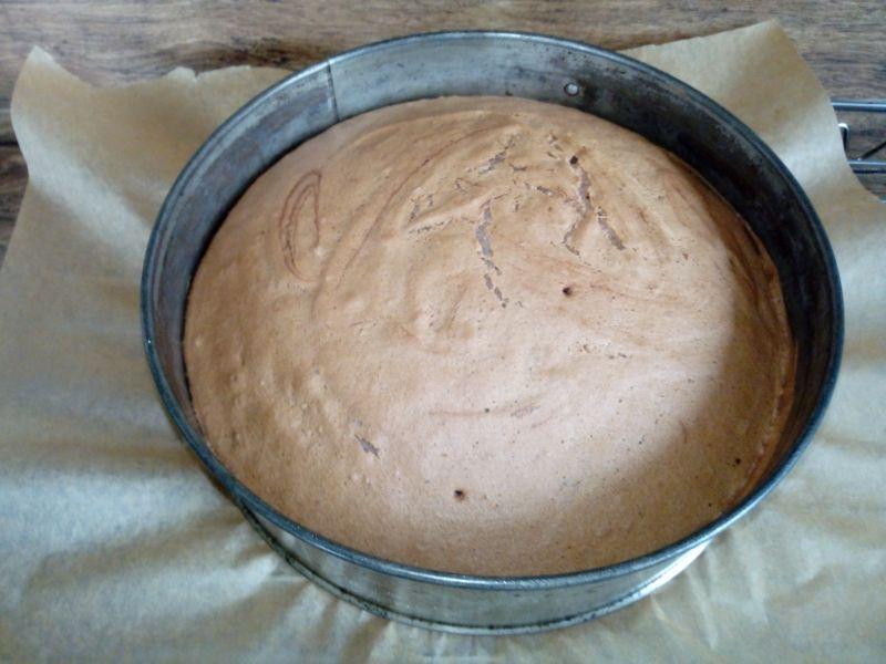 Biszkopt z białek lekko czekoladowy