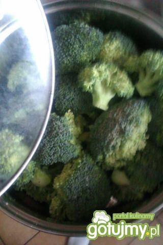 Bitki z brokułami
