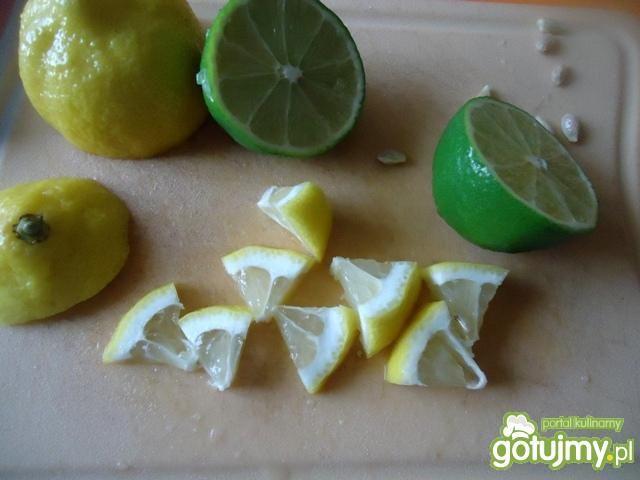 Cytrynowe i limonkowe kostki lodu