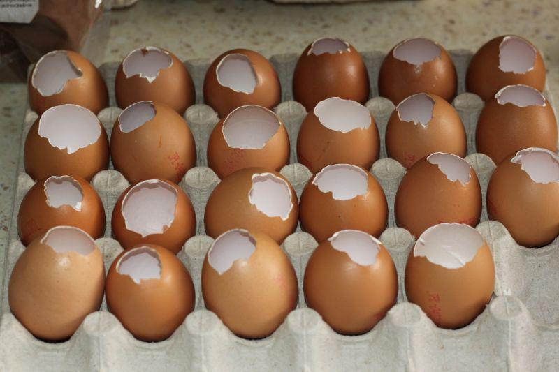 Galareta z piersią z kurczaka podana w inny sposób