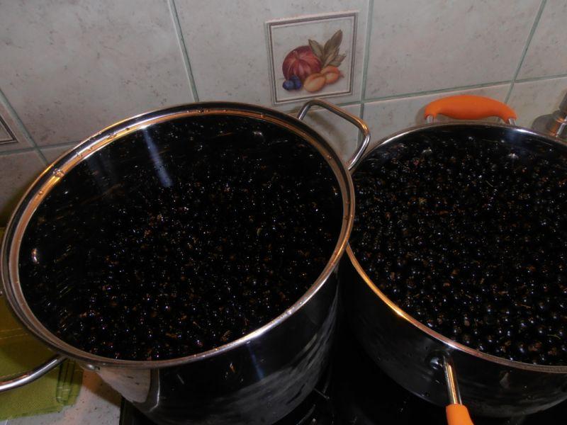 Galaretka z czarnej porzeczki z sokiem wiśniowym