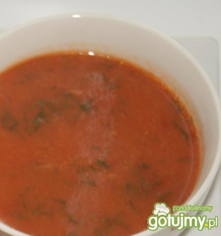 Gołąbki  w sosie z włoskimi ziołami