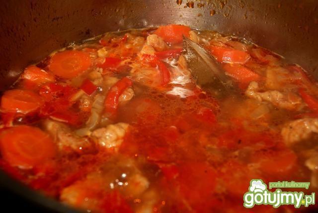 Gulasz z indyka z warzywami 2