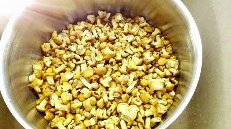 Kurki w sosie śmietanowym z wkładką mięsną