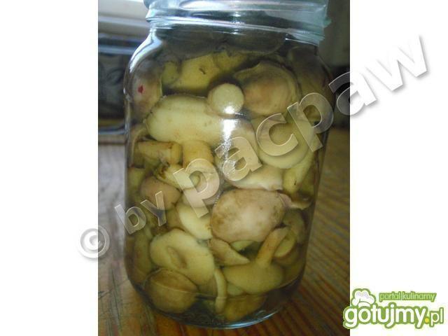 Maślaki marynowane aromatyczne
