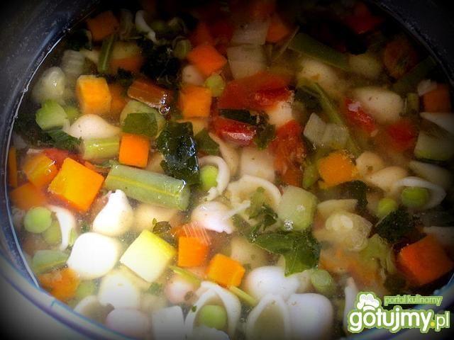 Minestrone - zupa jarzynowa po włosku