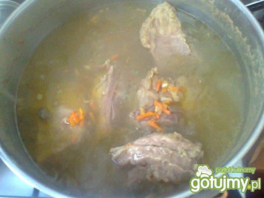 Moja zupa wiosenna- botwinka