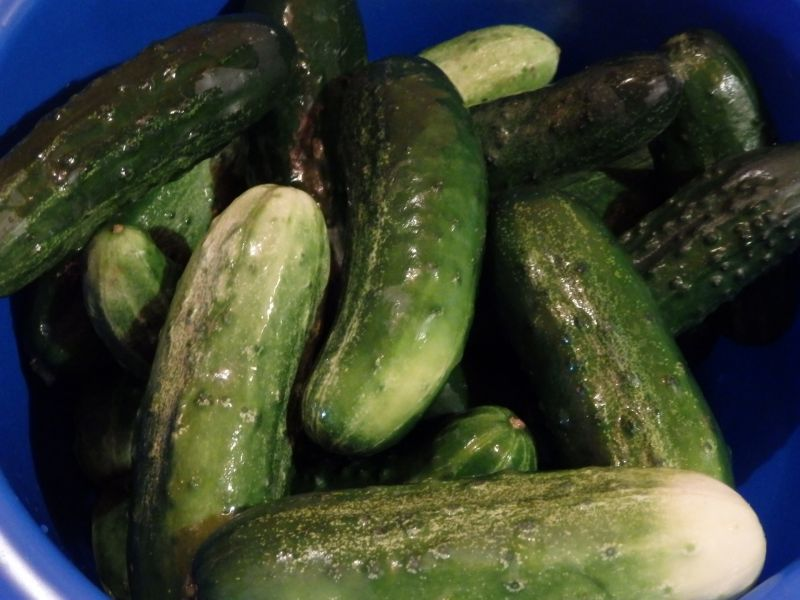 Ogórki w zalewie keczupowej