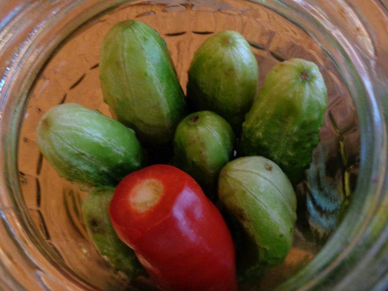 Ogórki z papryczką chili