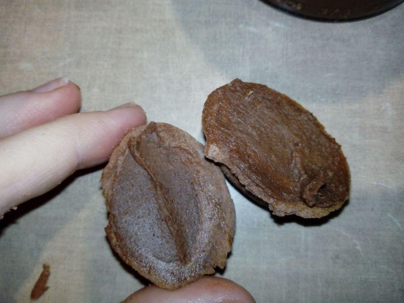 Orzeszki czekoladowo - orzechowe