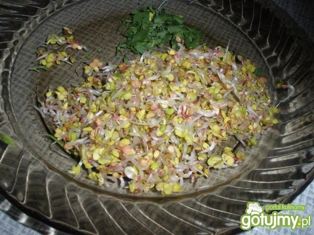 Pasta jajeczna z kiełkami rzodkiewki