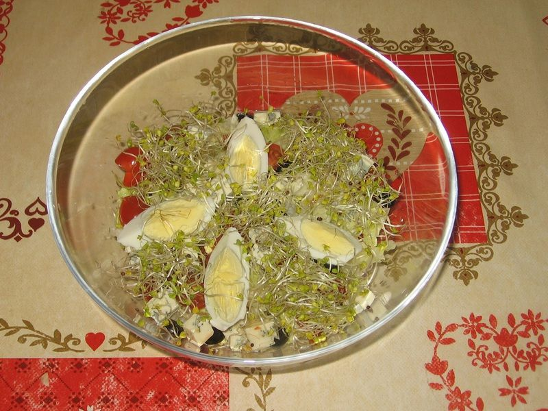 Sałatka z jajkiem, serem lazur i kiełkami