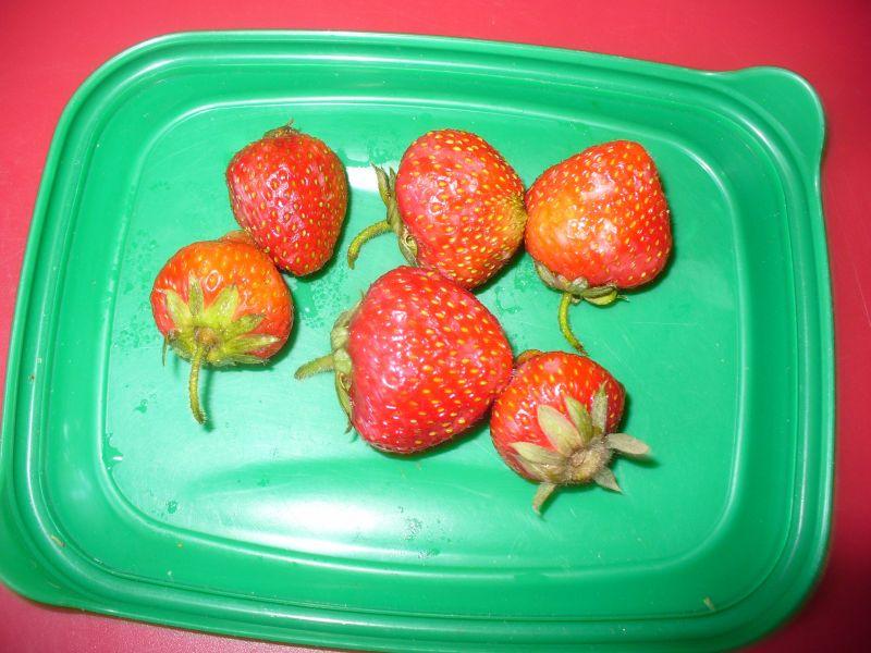 Śniadanie z płatków owsianych z owocami