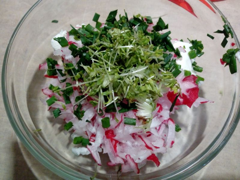 Twarożek z rzodkiewką i ziołami