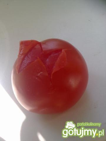udko kurczaka z salsą pomidorową