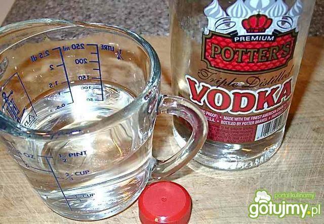 Vodka sauce - sos pomidorowy z wódką