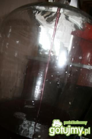 Wino z ciemnych winogron 1-1-3