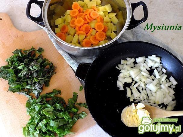 Zupa szczawiowo – pokrzywowa