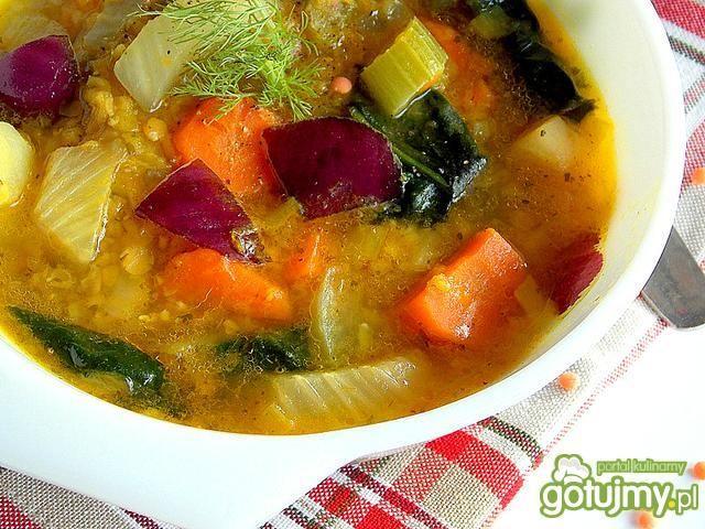 Zupa warzywna z czerwoną  soczewicą