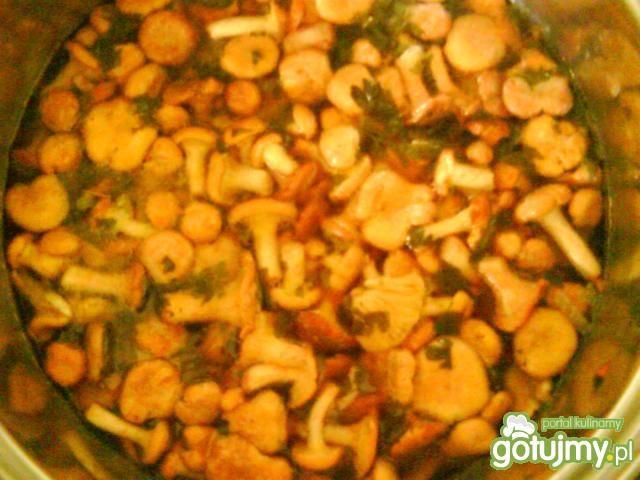 Zupa z cukinii i kurek