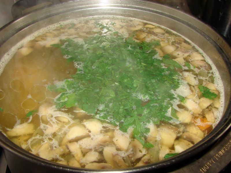 Zupka pieczarkowa