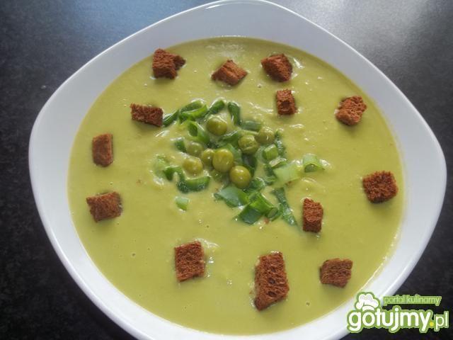 Zupka Shrek
