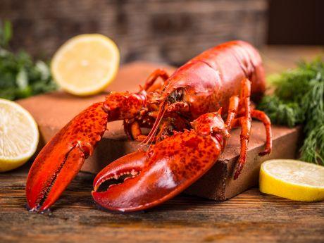 Jak ugotować homara?
