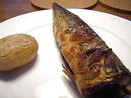 Makrela z grilla