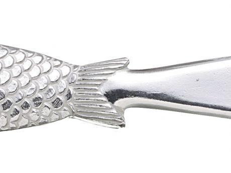 Metalowy skrobak do ryb