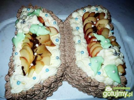 Tort-motyl