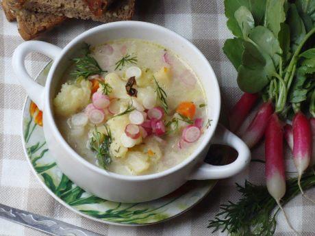 Wiosenna zupa z rzodkiewką