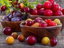15 przepisów na śliwkowe smakołyki