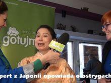 Wywiad o ostrygach z ekspertem z Japonii