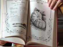 Recenzja książki - Staropolskie marynaty