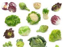8 warzyw kapustnych
