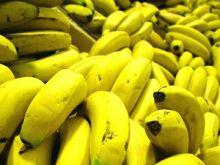 Aby banany szybciej dojrzały