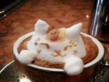 Arcydzieło w filiżance, czyli sztuka latte [film]