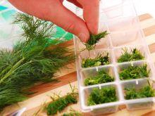 Aromatyczne zioła z zamrażalnika