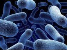 Bakterie E. coli w czeskiej wodzie mineralnej
