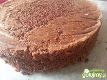 Biszkopt kakaowy 5