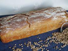 Chleb z ostropestem i siemieniem na zakwasie